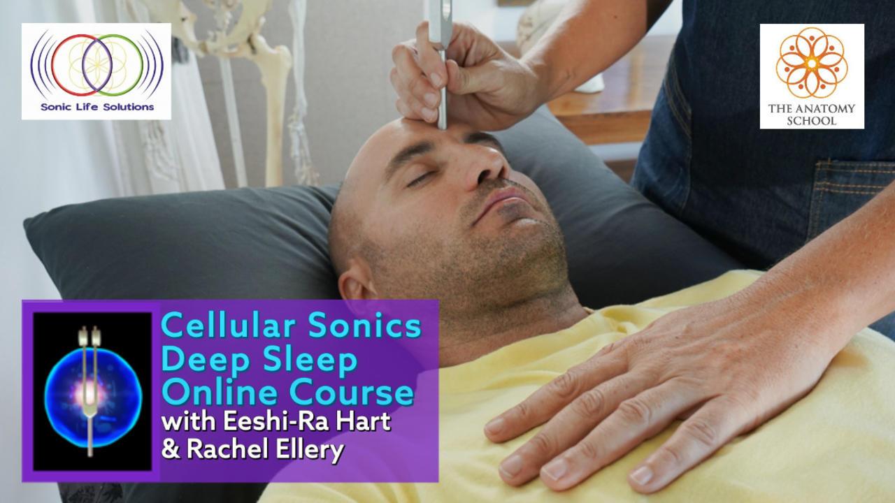 Deep Sleep Online Course